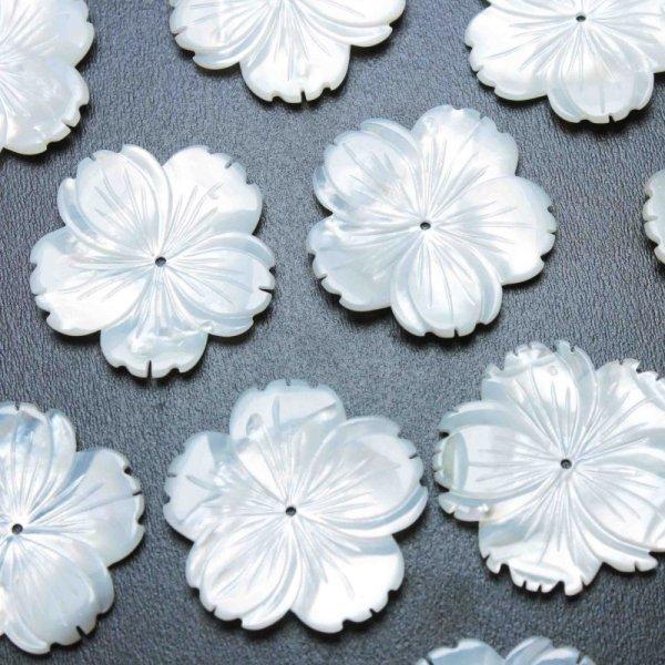 画像1: マザーオブパール 白蝶貝 花 フラワー 桜 彫刻 パーツ 1個 品番: 11831