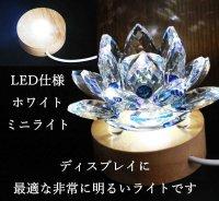 【オススメ!】インテリア照明 LEDランプ ディスプレイ ホワイトライト ミニサイズ 品番: 11854