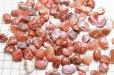 画像3: 【浄化フェア対象】 さざれ 南紅メノウ アゲート 中粒 1kgパック ストーンチップ 品番: 4631 (3)