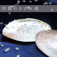 貝 さざれ 皿 10×17cm  品番: 10908