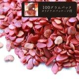さざれ 赤サンゴ コーラル 珊瑚 オリジナルパッケージ付 100gパック  品番: 10471