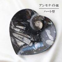 アンモナイト 皿 ハート型 インテリア 化石 ディスプレイ 浄化 約16x20cm 品番: 12412