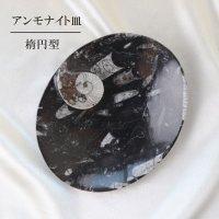 アンモナイト 皿 楕円型 インテリア 化石 ディスプレイ 浄化 約17x14cm 品番: 12411