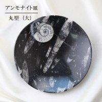 アンモナイト 大皿 丸型 インテリア 化石 ディスプレイ 浄化 直径約16cm 品番: 12413