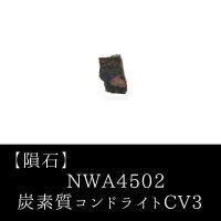 【隕石】NWA4502 炭素質コンドライトCV3 アルジェリア産 2005年 品番:13061