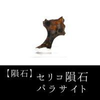 【隕石】セリコ隕石 パラサイト ケニア産 2017年08月03日 品番:13059