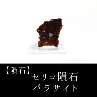 【隕石】セリコ隕石 パラサイト ケニア産 2017年08月03日 品番:13060