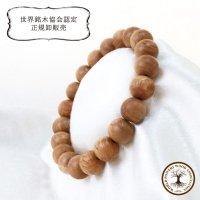 【パワーズウッド】ブレス 栗瘤 〈日本〉 10mm くりこぶ 勇気をくれる 力強さ 人間的成長 円満 品番: 13519