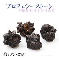 原石 プロフェシーストーン 約20gから29g 1個 サハラ砂漠産 オリジナルパッケージ付 予言石 レア 品番:13770