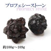 原石 プロフェシーストーン 約100gから109g 1個 サハラ砂漠産 オリジナルパッケージ付 予言石 レア 品番:13778