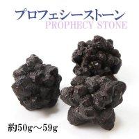 原石 プロフェシーストーン 約50gから59g 1個 サハラ砂漠産 オリジナルパッケージ付 予言石 レア 品番:13773