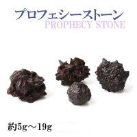 原石 プロフェシーストーン 約5gから19g 1個 サハラ砂漠産 オリジナルパッケージ付 予言石 レア 品番:13779