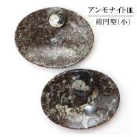 アンモナイト 小皿 楕円型 インテリア 化石 ディスプレイ 浄化 約12x9cm 1枚 品番: 14243
