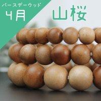 【バースデーウッド】4月の誕生木 山桜(やまざくら) 8mm  品番: 6141