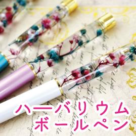 https://www.stoneclub.jp/data/stoneclub/image/201801/top-bana/habaniumu.jpg