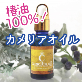 https://www.stoneclub.jp/data/stoneclub/image/201801/top-bana/kameria.jpg