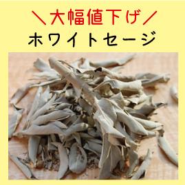 https://www.stoneclub.jp/data/stoneclub/image/201801/top-bana/seji.jpg