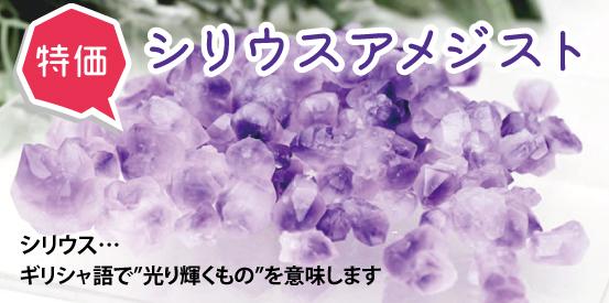 https://www.stoneclub.jp/data/stoneclub/image/201801/top-bana/siriusuamejisuto.jpg