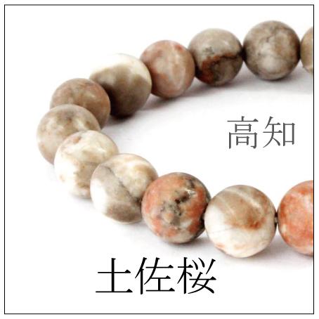 https://www.stoneclub.jp/data/stoneclub/image/2019/nihon-meiseki-bana/tosazakura02.jpg